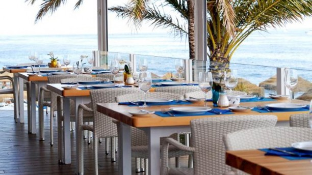 Cooldeals extrenieve ski school marbella estepona - Restaurante noto marbella ...